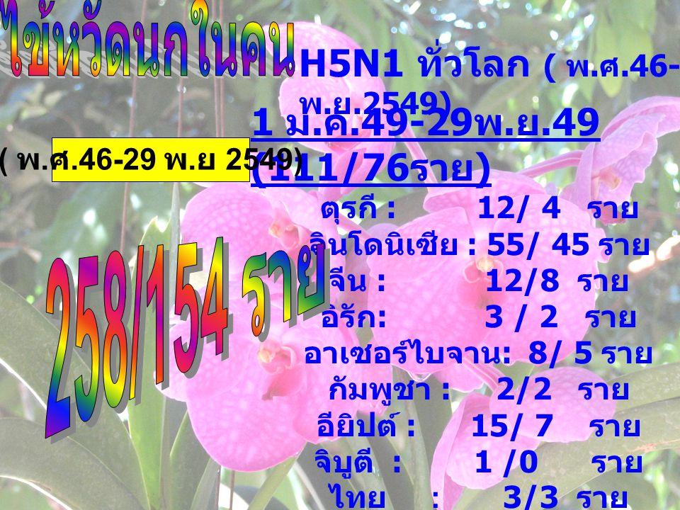 H5N1 ทั่วโลก ( พ.ศ.46-29 พ.ย.2549) 1 ม.ค.49-29พ.ย.49 (111/76ราย)