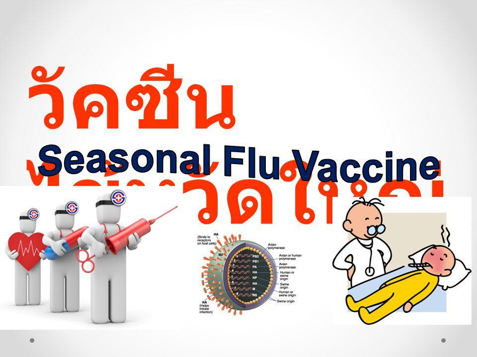 วัคซีนไข้หวัดใหญ่ Seasonal Flu Vaccine