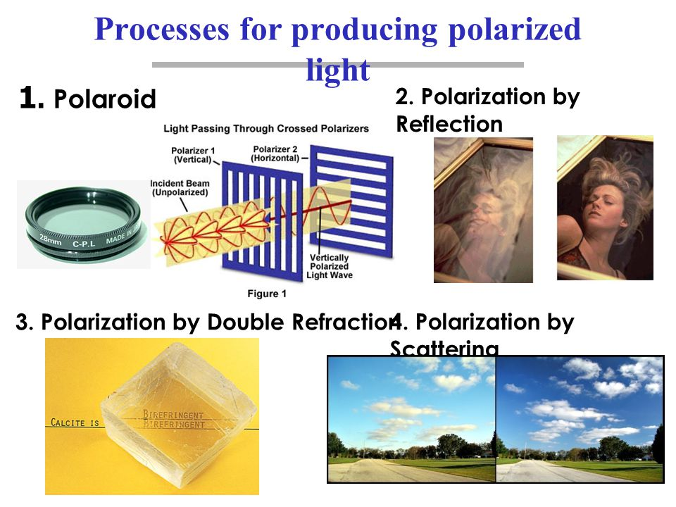 Processes for producing polarized light
