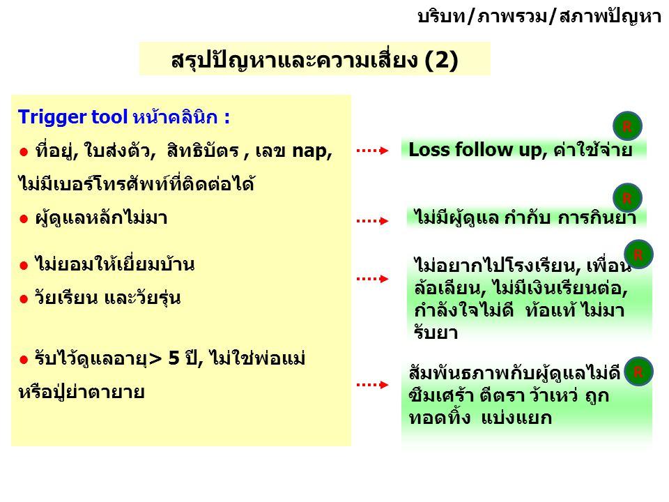 สรุปปัญหาและความเสี่ยง (2)