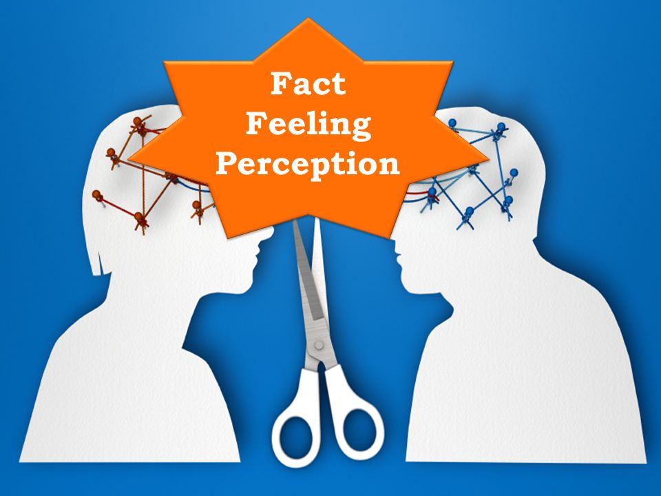 Fact Feeling Perception