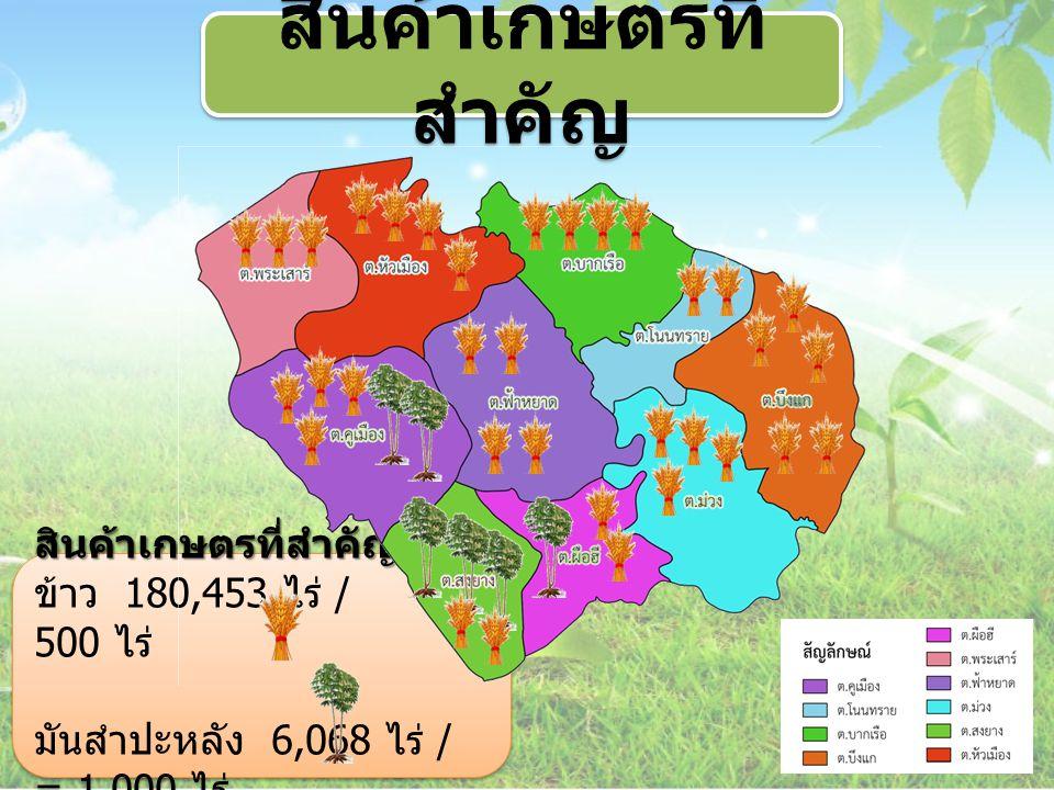 สินค้าเกษตรที่สำคัญ สินค้าเกษตรที่สำคัญ ข้าว 180,453 ไร่ / = 500 ไร่