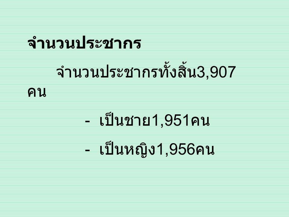 จำนวนประชากร - เป็นชาย1,951คน - เป็นหญิง1,956คน