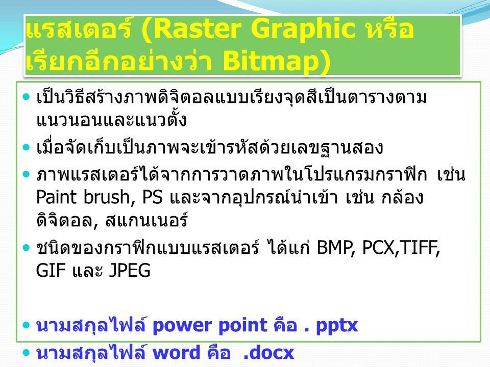 แรสเตอร์ (Raster Graphic หรือเรียกอีกอย่างว่า Bitmap)