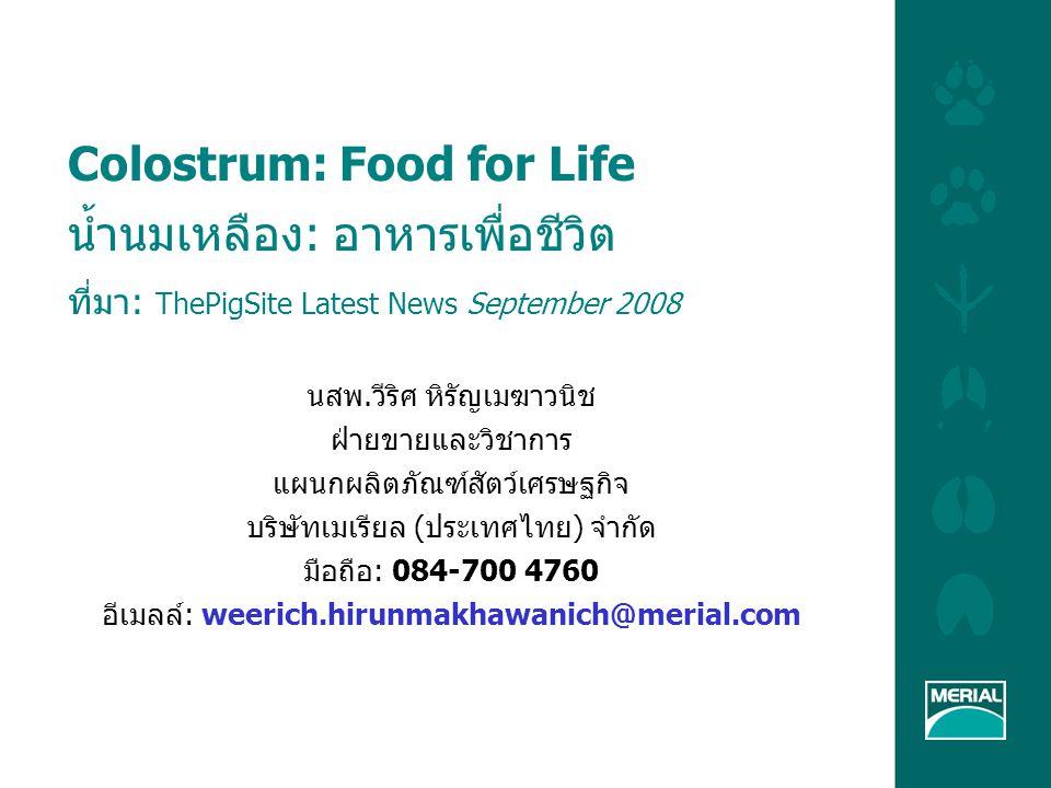 Colostrum: Food for Life น้ำนมเหลือง: อาหารเพื่อชีวิต ที่มา: ThePigSite Latest News September 2008