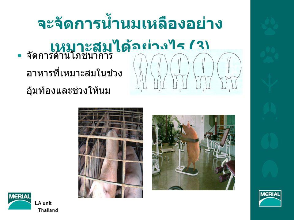 จะจัดการน้ำนมเหลืองอย่างเหมาะสมได้อย่างไร (3)