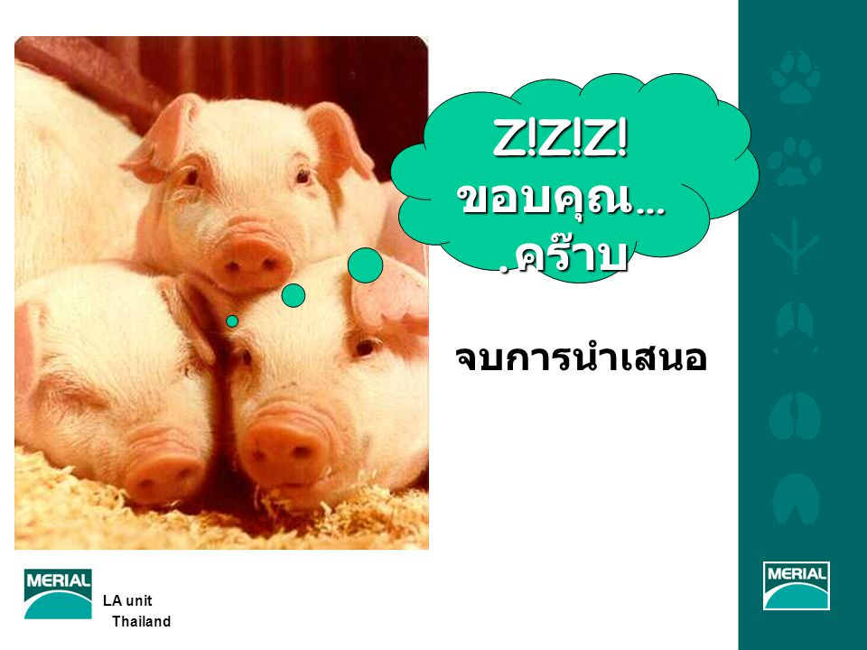 Z!Z!Z!ขอบคุณ….คร๊าบ จบการนำเสนอ LA unit Thailand