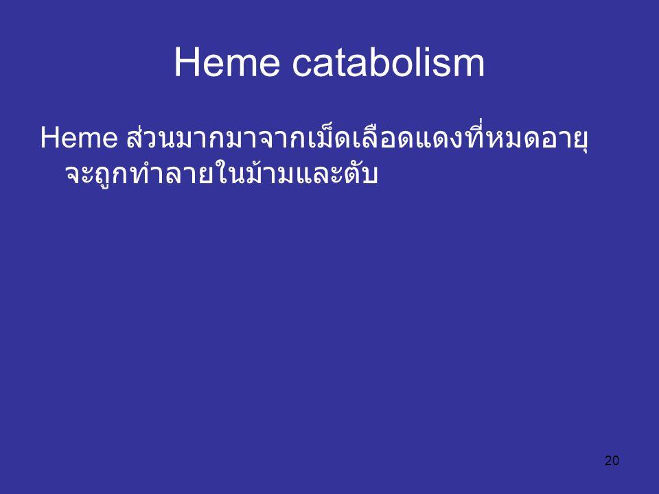 Heme catabolism Heme ส่วนมากมาจากเม็ดเลือดแดงที่หมดอายุ จะถูกทำลายในม้ามและตับ