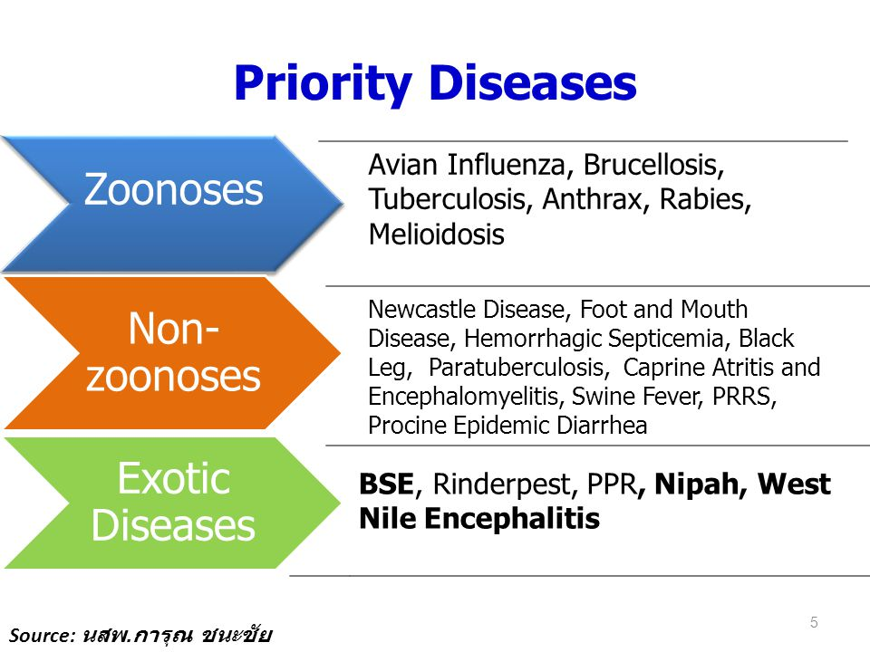 Priority Diseases Zoonoses Non-zoonoses Exotic Diseases