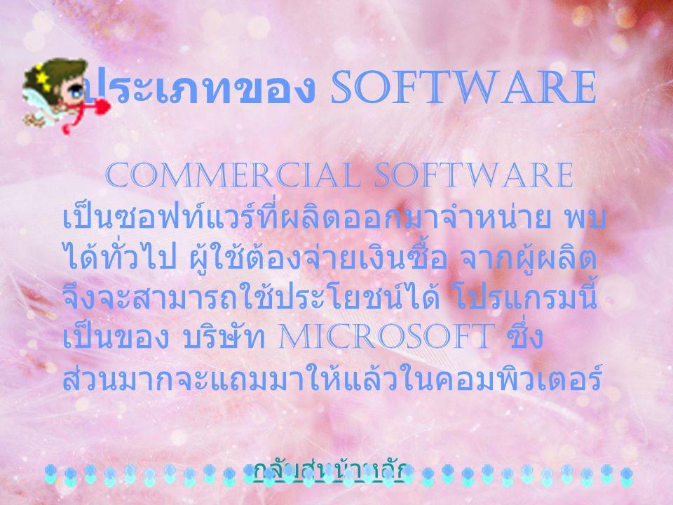 ประเภทของ Software