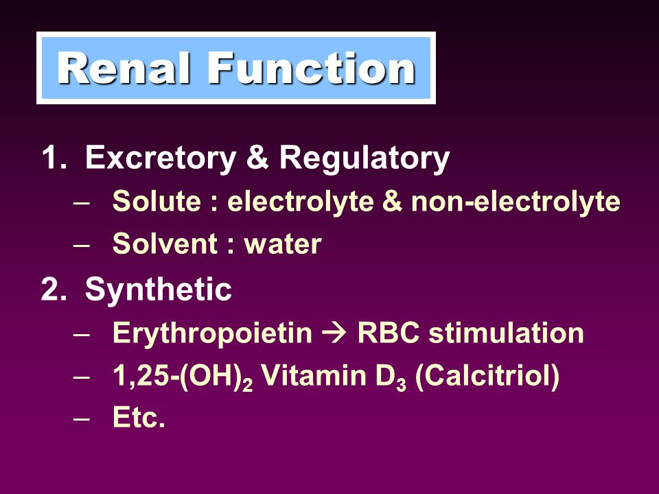 Renal Function Excretory & Regulatory Synthetic