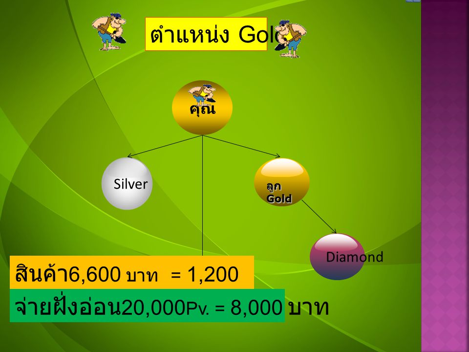 ตำแหน่ง Gold สินค้า6,600 บาท = 1,200 Pv.