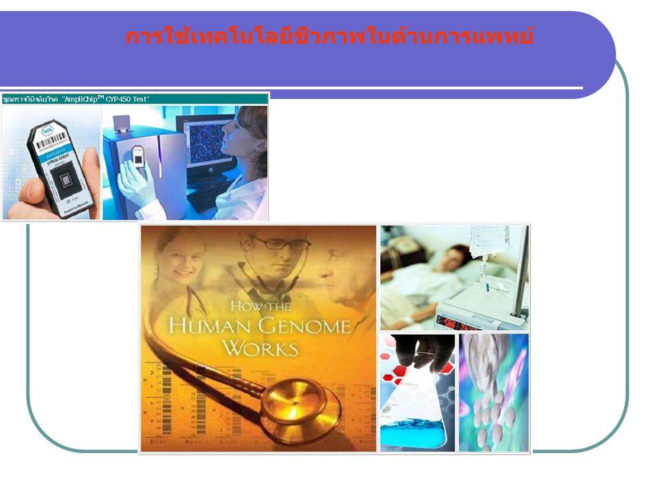 การใช้เทคโนโลยีชีวภาพในด้านการแพทย์