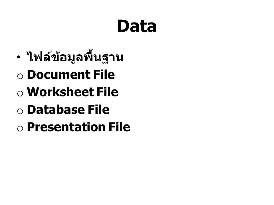 Data ไฟล์ข้อมูลพื้นฐาน Document File Worksheet File Database File