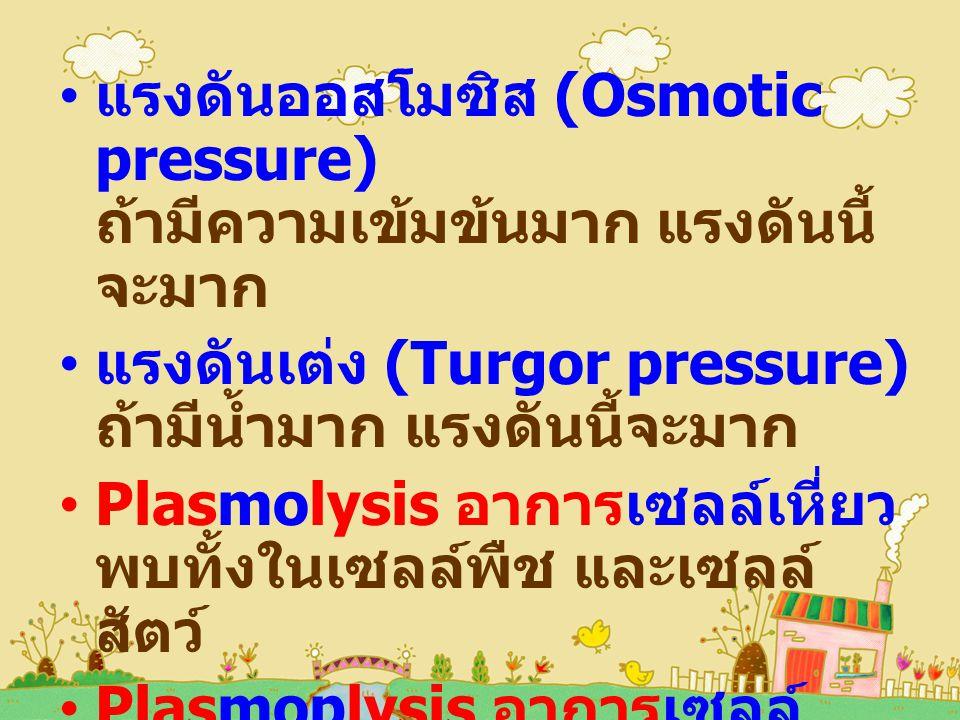 แรงดันออสโมซิส (Osmotic pressure) ถ้ามีความเข้มข้นมาก แรงดันนี้จะมาก