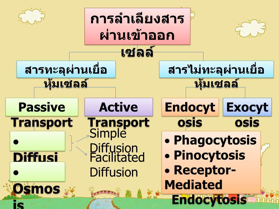 การลำเลียงสาร ผ่านเข้าออกเซลล์