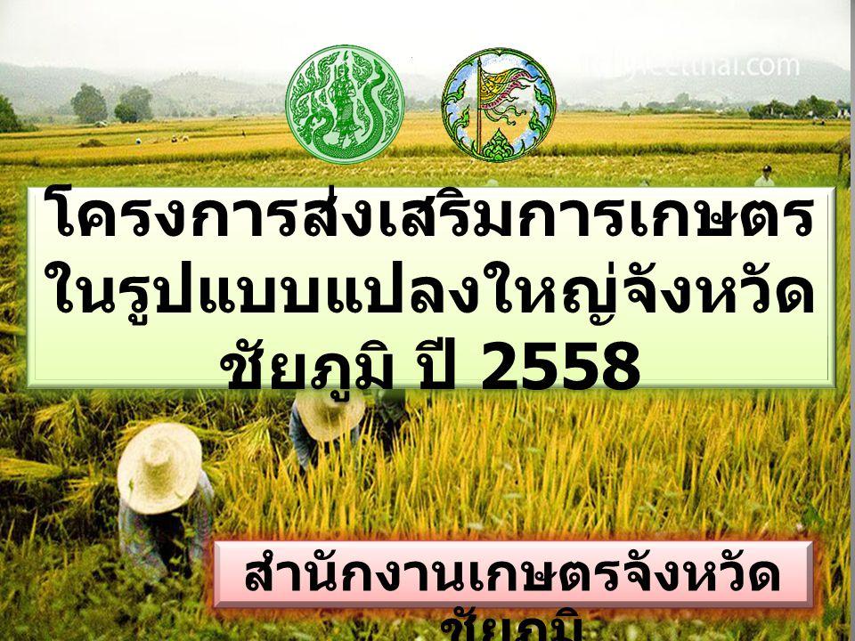 โครงการส่งเสริมการเกษตร ในรูปแบบแปลงใหญ่จังหวัดชัยภูมิ ปี 2558