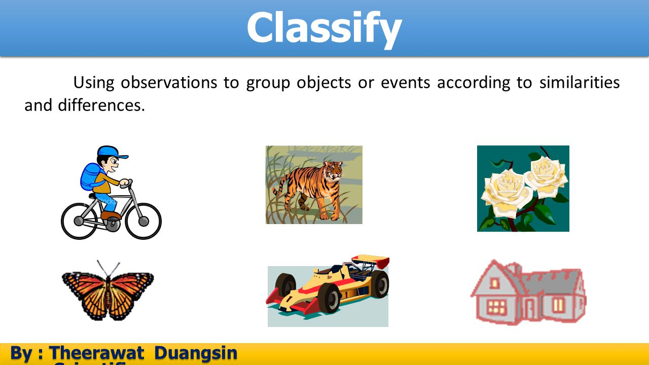 Classify Using observations to group objects or events according to similarities and differences.