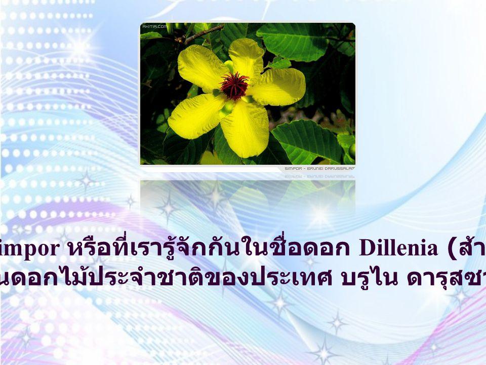 ดอก Simpor หรือที่เรารู้จักกันในชื่อดอก Dillenia (ส้านชะวา) เป็นดอกไม้ประจำชาติของประเทศ บรูไน ดารุสซาลาม