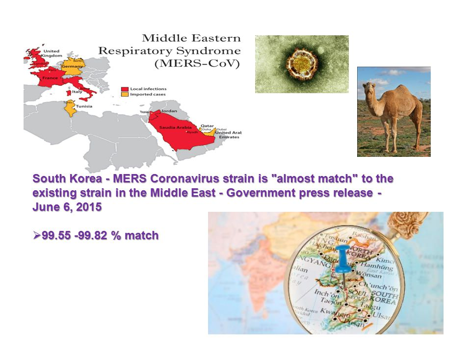 South Korea - MERS Coronavirus strain is almost match to the existing strain in the Middle East - Government press release - June 6, 2015