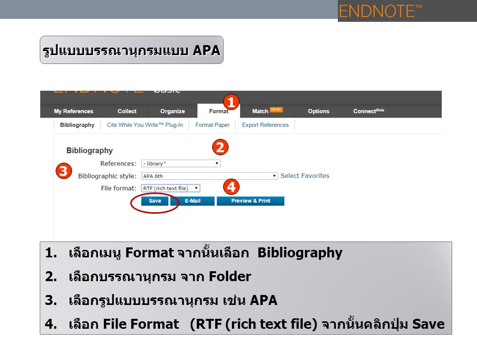 รูปแบบบรรณานุกรมแบบ APA