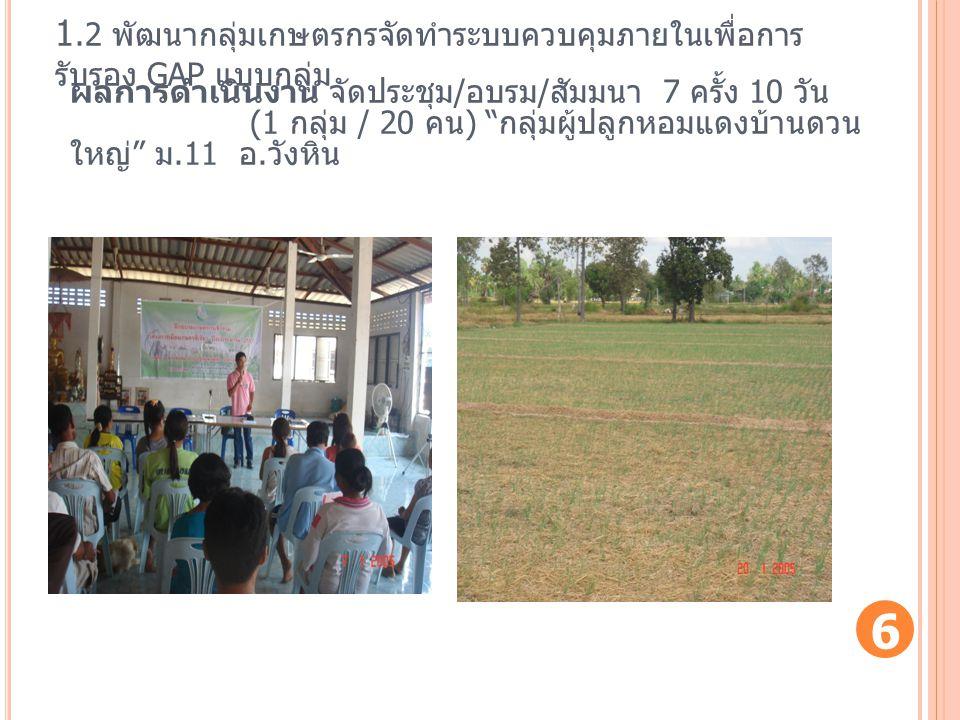 1.2 พัฒนากลุ่มเกษตรกรจัดทำระบบควบคุมภายในเพื่อการรับรอง GAP แบบกลุ่ม