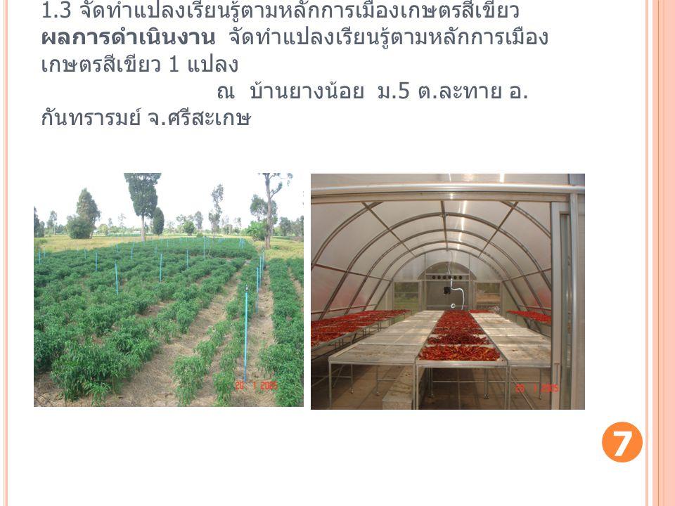 1.3 จัดทำแปลงเรียนรู้ตามหลักการเมืองเกษตรสีเขียว