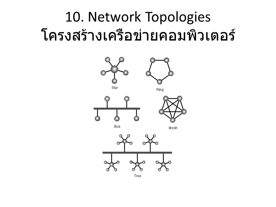 10. Network Topologies โครงสร้างเครือข่ายคอมพิวเตอร์