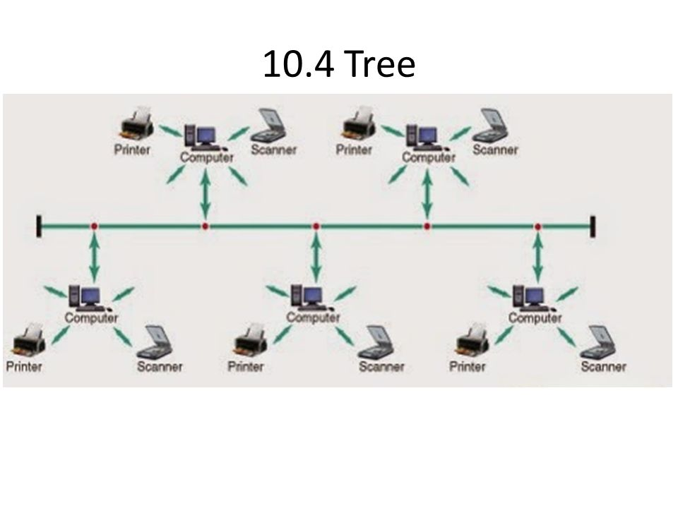 10.4 Tree
