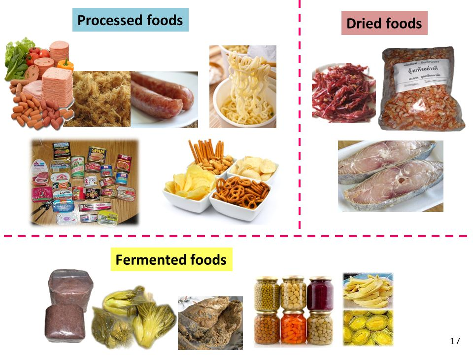 Processed foods Dried foods Fermented foods
