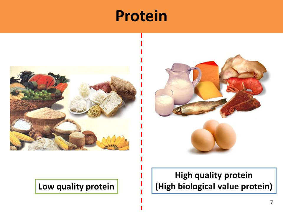 (High biological value protein)