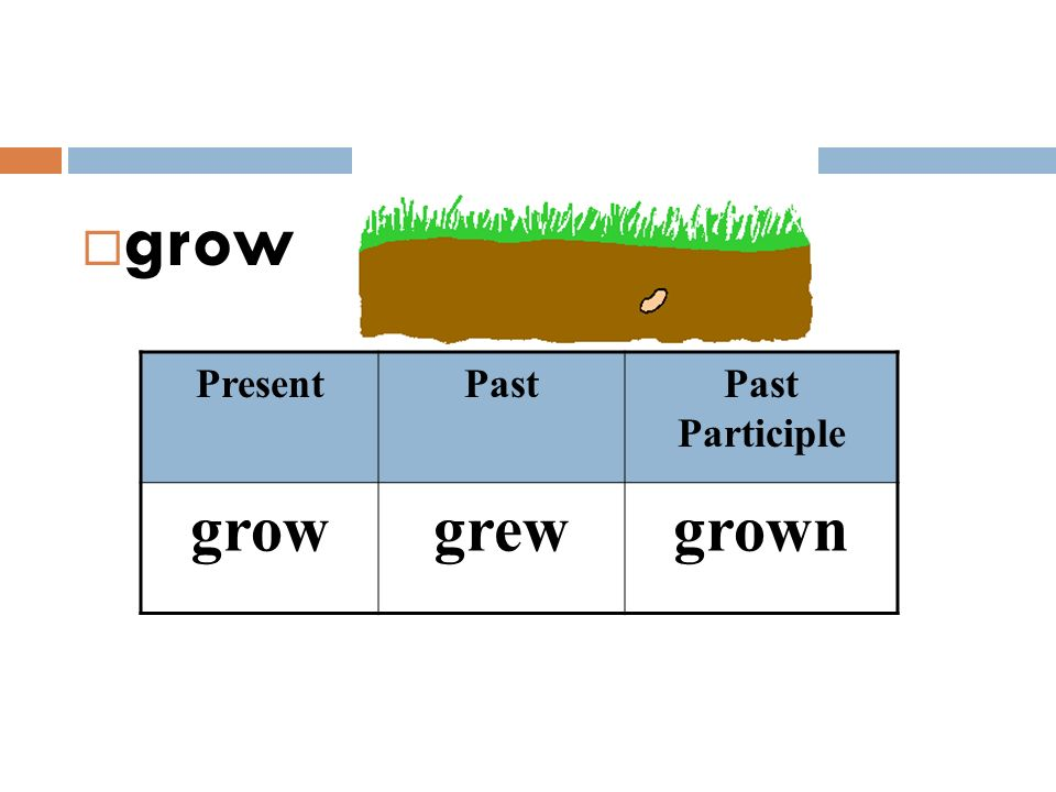 grow Present Past Past Participle grow grew grown