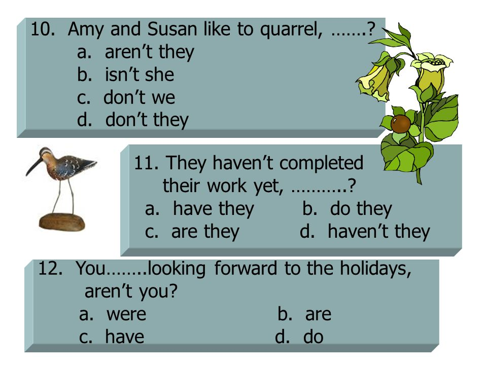 10. Amy and Susan like to quarrel, …….
