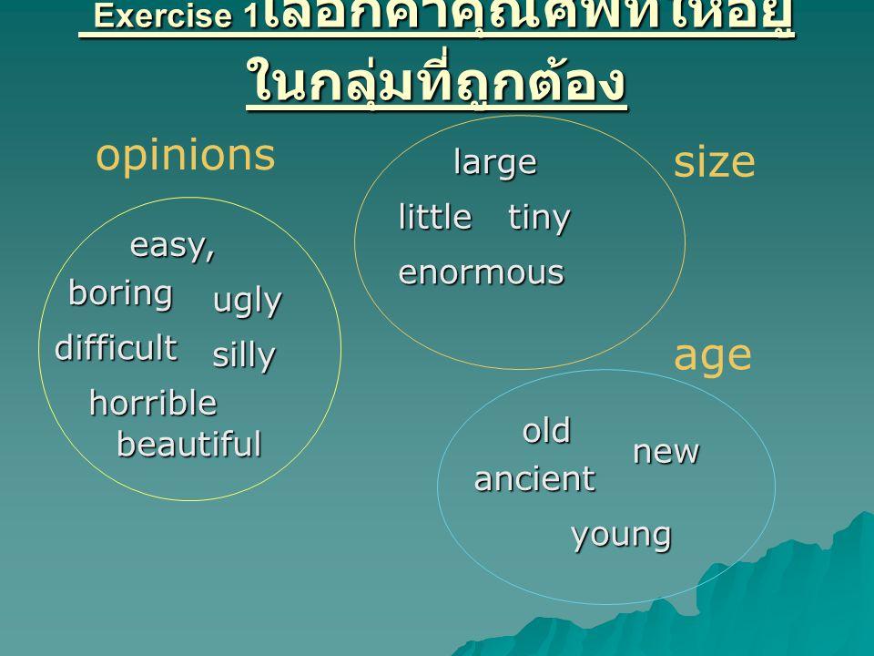 Exercise 1เลือกคำคุณศัพท์ให้อยู่ในกลุ่มที่ถูกต้อง