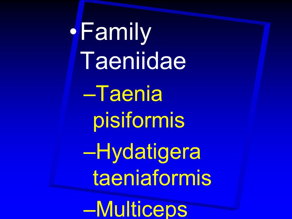 Family Taeniidae Taenia pisiformis Hydatigera taeniaformis