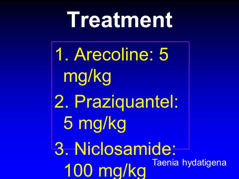 Treatment 1. Arecoline: 5 mg/kg 2. Praziquantel: 5 mg/kg