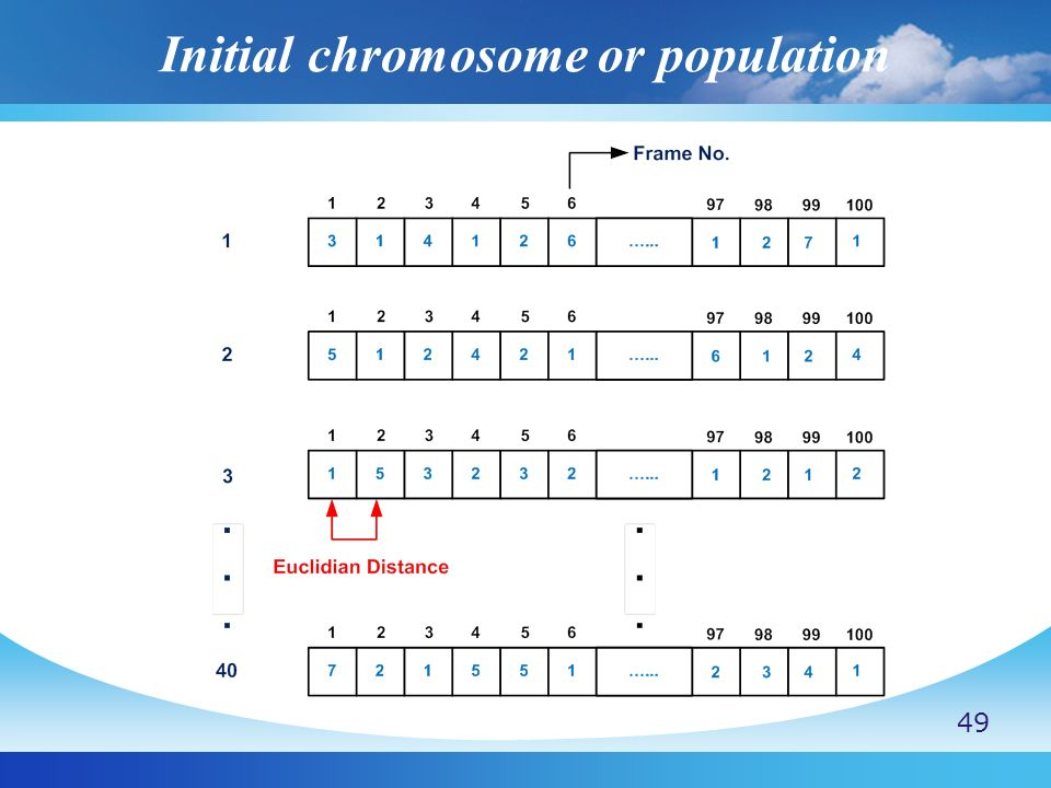 Initial chromosome or population