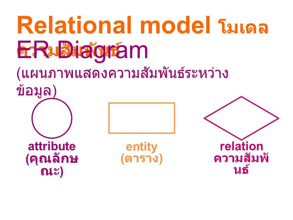 attribute (คุณลักษณะ) relation ความสัมพันธ์