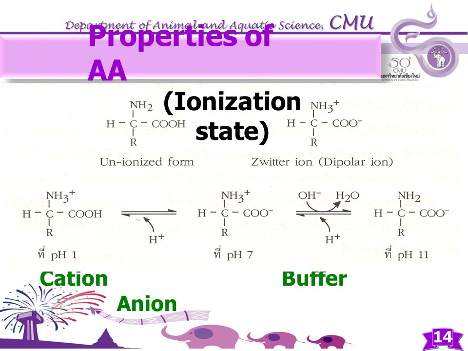 Properties of AA (Ionization state) Cation Buffer Anion