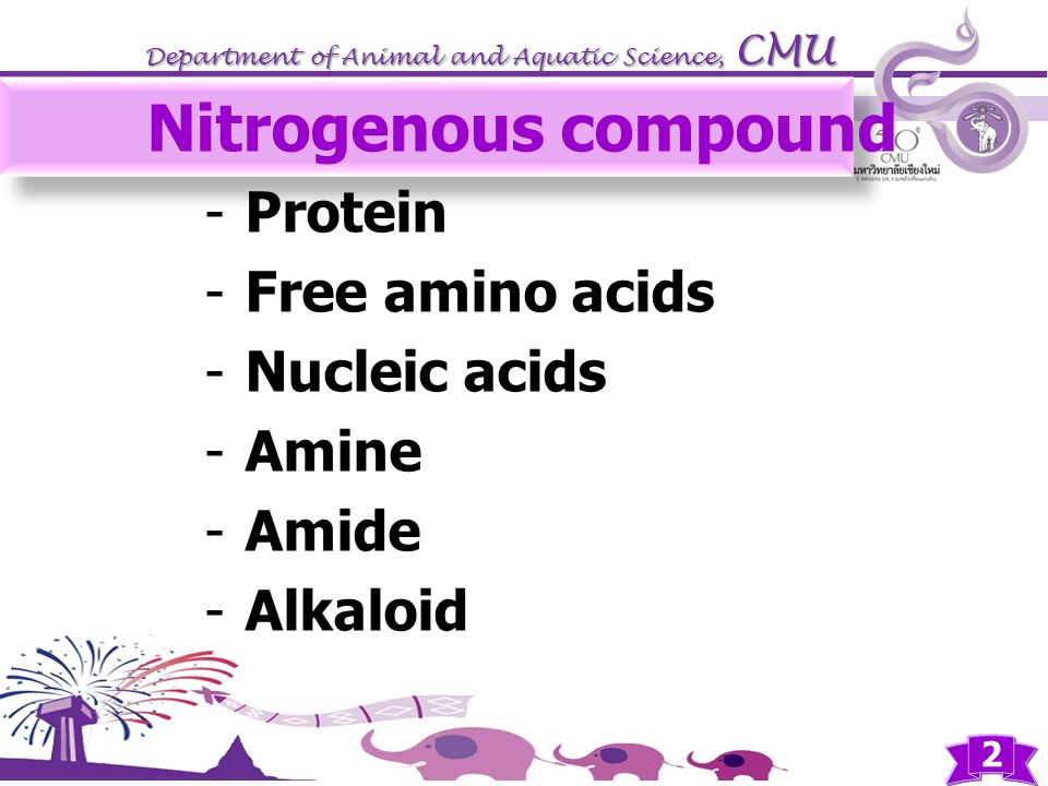Nitrogenous compound Protein Free amino acids Nucleic acids Amine