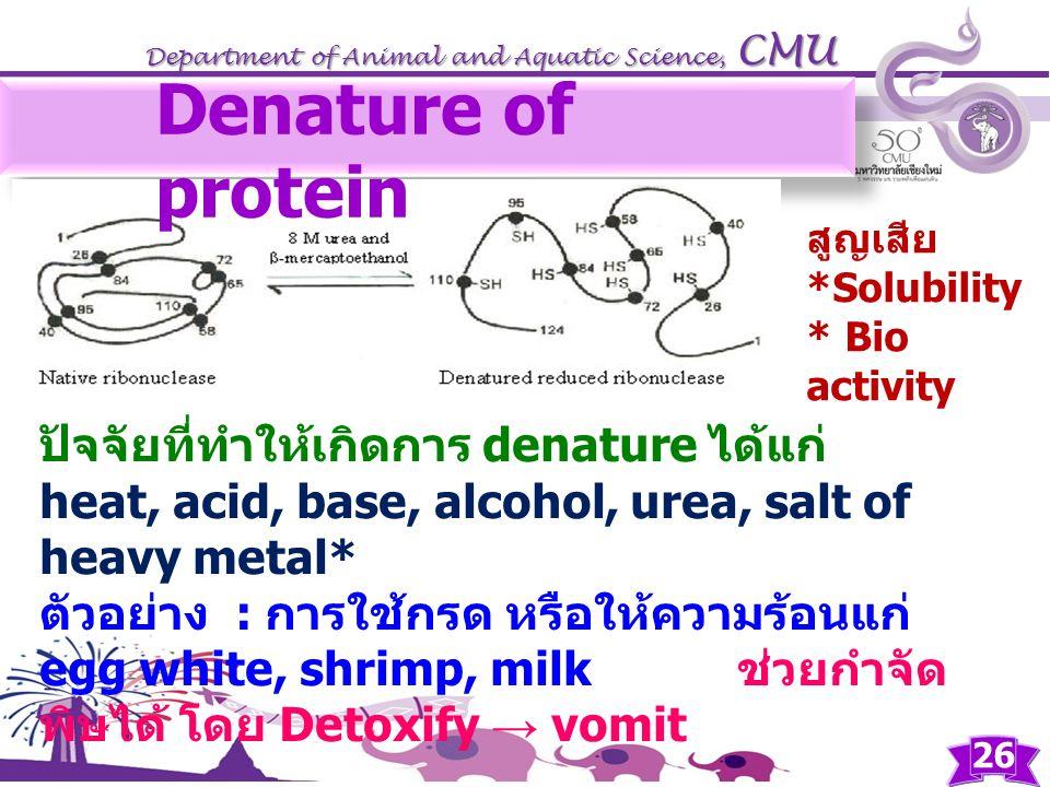 Denature of protein ปัจจัยที่ทำให้เกิดการ denature ได้แก่