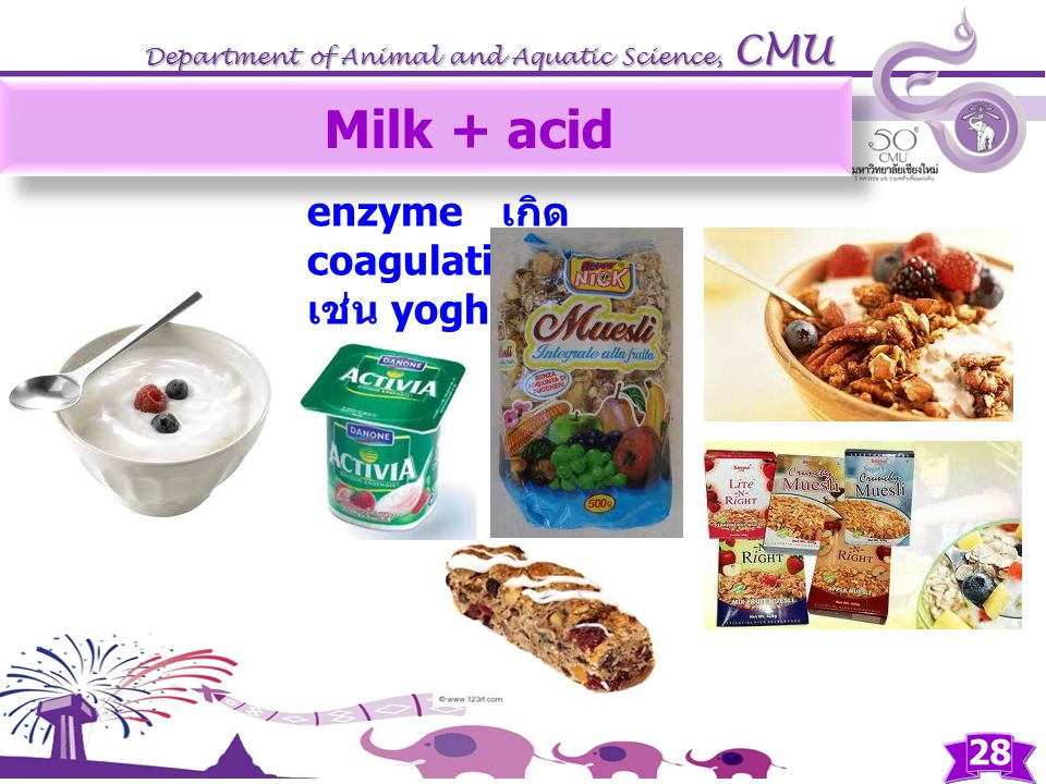 Milk + acid enzyme เกิด coagulation เช่น yoghurt