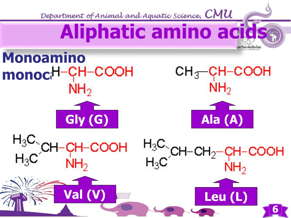Aliphatic amino acids Monoamino monocarboxylic Gly (G) Ala (A) Val (V)