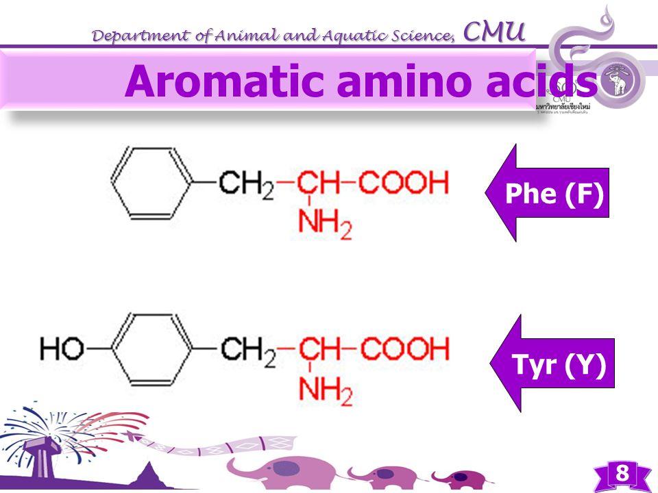 Aromatic amino acids Phe (F) Tyr (Y)