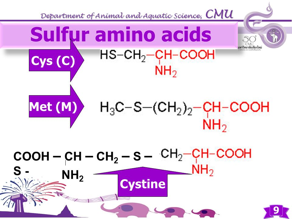 Sulfur amino acids Cys (C) Met (M) COOH – CH – CH2 – S – S - NH2
