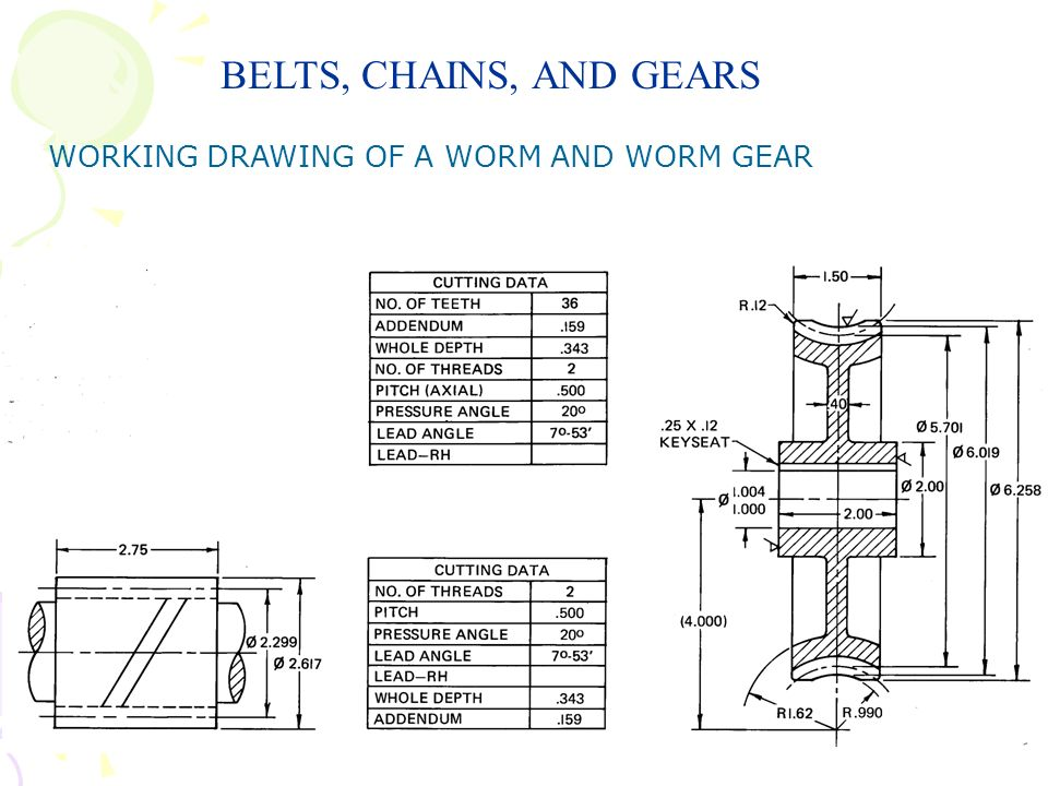 BELTS, CHAINS, AND GEARS WORKING DRAWING OF A WORM AND WORM GEAR