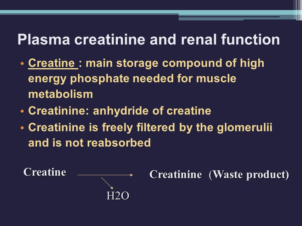 Plasma creatinine and renal function