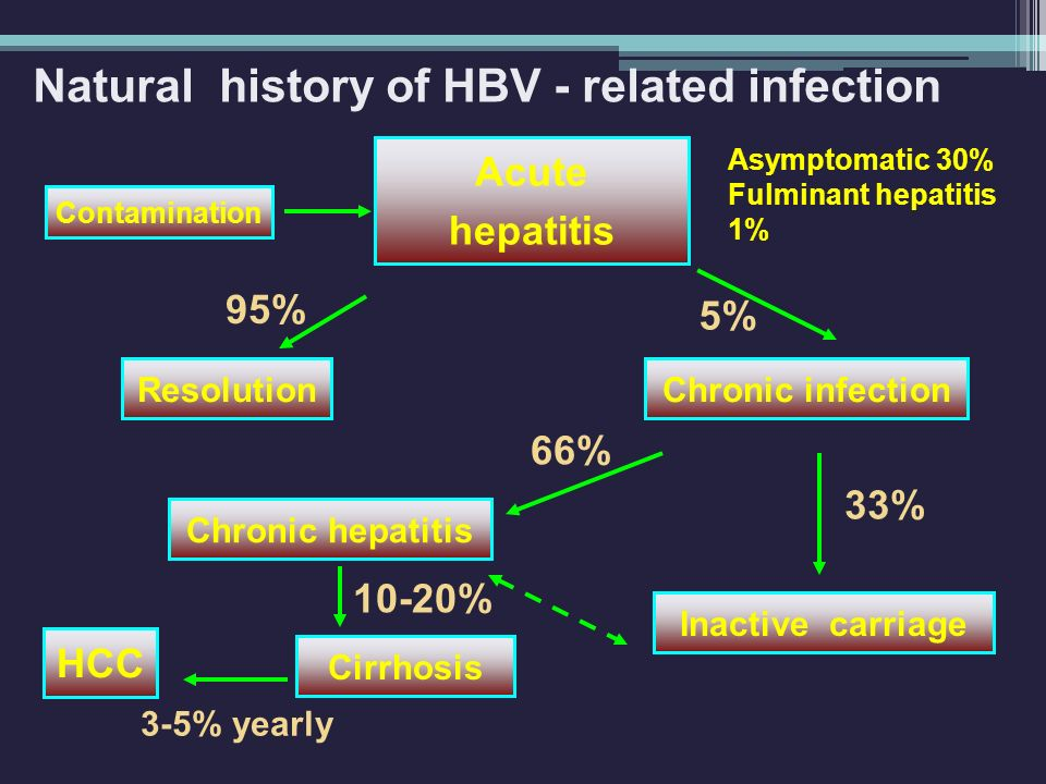Natural history of HBV - related infection