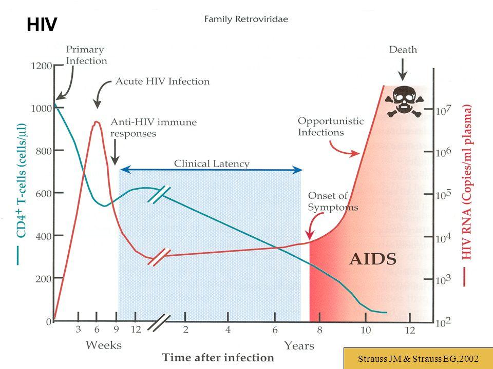 HIV Strauss JM & Strauss EG,2002