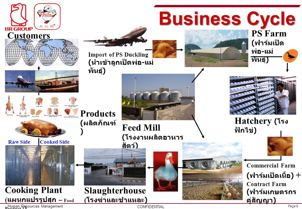 Business Cycle PS Farm Customers (ลูกค้า) Products